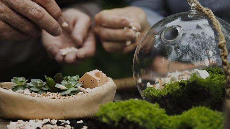 Comment créer une jardinerie ?